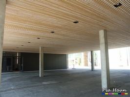 Schulgebäude | Brandschutzmittelnachweis für abgehängte Holz-Unterdecke | Unteransicht, Foto: © Ingenieurbüro Pia Haun - Trier