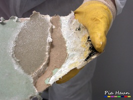 mikrobieller Befall an Gipskartonplatte, Foto: © Ingenieurbüro Pia Haun - Trier