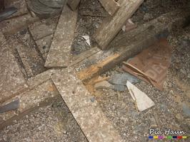 Taubenkot im Dachraum, Foto: © Ingenieurbüro Pia Haun - Trier