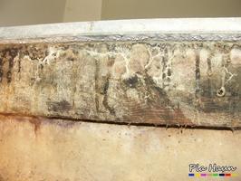 Muschelkrempling | Mycel an in einem Keller eingebauten Balken, Foto: © Ingenieurbüro Pia Haun - Trier