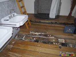 Ausgebreiteter Hausporling | massiver Befall an Eichenholz-Boden eines Badezimmers, Foto: © Ingenieurbüro Pia Haun - Trier
