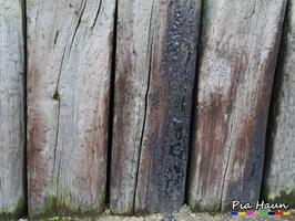 PAK-haltiges Holzschutzmittel, Foto: © Ingenieurbüro Pia Haun - Trier