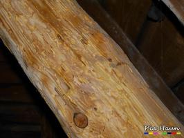 Abgebeilte Holzflächen | Hinweis auf Holzschutzmittelbelastung, Foto: © Ingenieurbüro Pia Haun - Trier