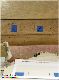 Abb. 8 | Beprobung der Oberfläche eines sichtbar verfärbten Fensterrahmens