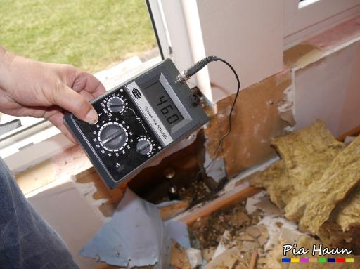 Holzhaus mit Schleimpilzbefall Ermittlung der Materialfeuchte von annähernd 50%, Foto: © Ingenieurbüro Pia Haun - Trier