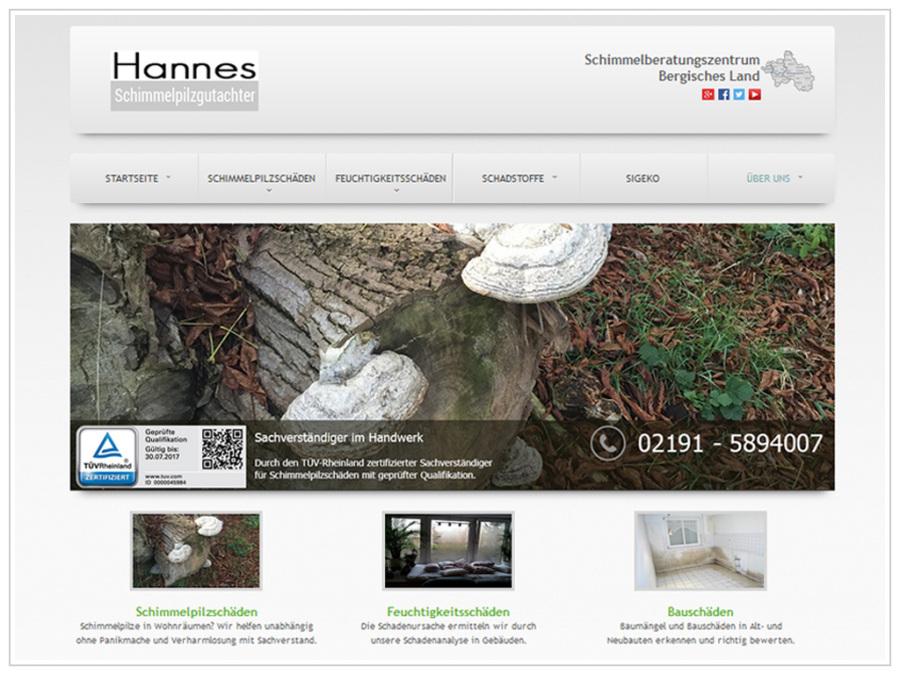Bausachverständigenbüro für Feuchtigkeits- und Schimmelpilzschäden Hannes GmbH