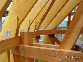 Gebrauchsklasse 1   Bauteile im Innenbereich   Gefährdung durch Holz zerstörende Insekten, Insekten