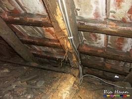 Gerichtsgutachten für das Landgericht Frankenthal | Hausbockbefall an Holzbalkendecken und Dachkonstruktion, Foto: © Ingenieurbüro Pia Haun - Trier