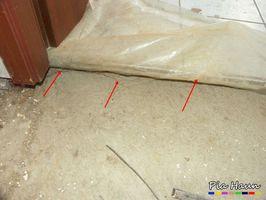 Echter Hausschwamm | nicht fachgerecht sanierter Feuchteschaden: Mycel auf Rohfußboden/ Badezimmer, Foto: © Ingenieurbüro Pia Haun - Trier