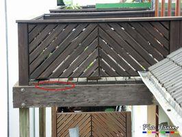 Blättlinge   Befall der Tragkonstruktion - sofortige Sperrung des Balkons, Foto: © Ingenieurbüro Pia Haun - Trier
