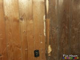 klarers, Lindan haltiges Holzschutzmittel auf Nut- und Federbrettern, Foto: © Ingenieurbüro Pia Haun - Trier