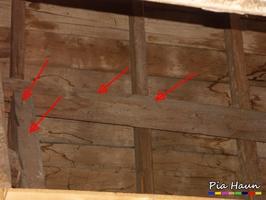 verdübelte Bohrlöcher | Hinweis auf Holzschutzmittelbelastung, Foto: © Ingenieurbüro Pia Haun - Trier
