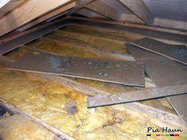 mikrobieller Befall an Holzwerkstoffplatten und mineralischer Dämmung, Foto: © Ingenieurbüro Pia Haun - Trier