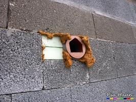 Mängel im Mauerwerk werden zu Folgeschäden wie Putzrissen führen, Foto: © Ingenieurbüro Pia Haun - Trier